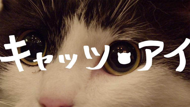 「キャッツ・アイ」48 Hour Film Project(2016)